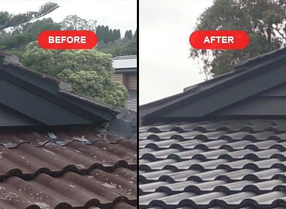 Roof Painting Leafvac